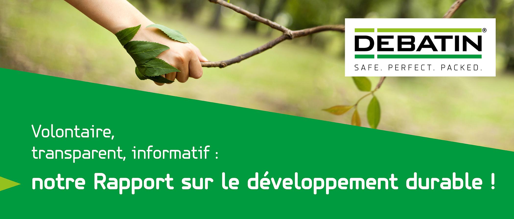 rapport sur le développement durable